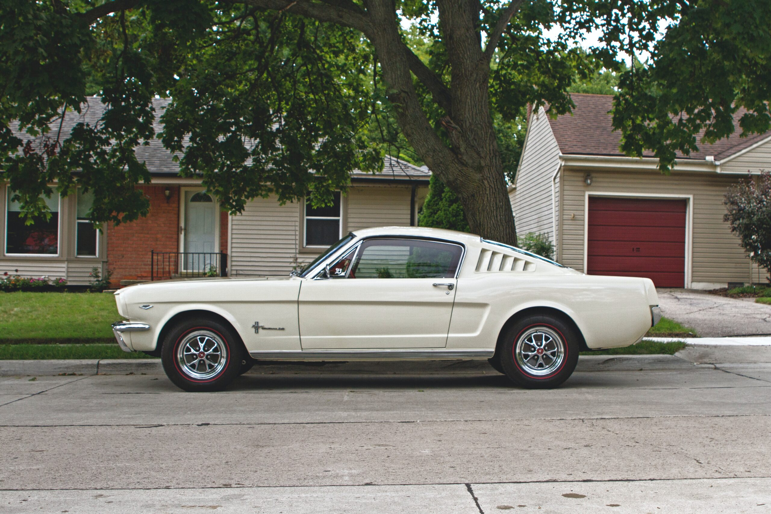 1967 mustang fastback in white